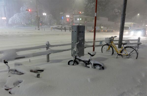 上野中央通り交番前…。都内に大雪警報発令。停電も心配です pic.twitter.com/FD598JUShE