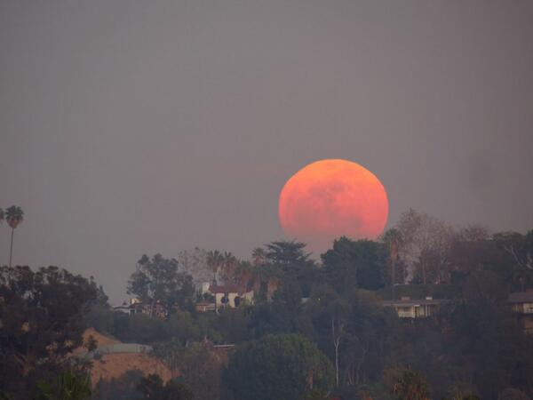 Holy crap that's BEAUTIFUL. RT @DonnellyWood: @HollywoodLA311 #FullMoon #ValentinesDay the view from Yamashiro http://t.co/VnSl0B0Hg1