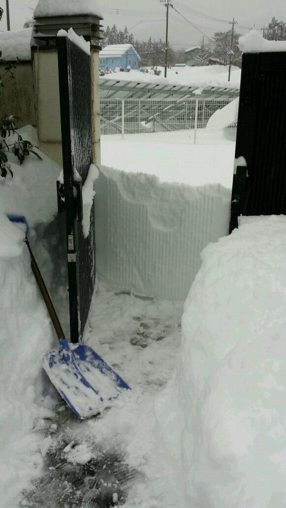 雪かきして、やっと門にたどり着いて開いた瞬間、今までの努力が無駄に感じた。しゃべるを投げた。 pic.twitter.com/uB3gR6LHz1
