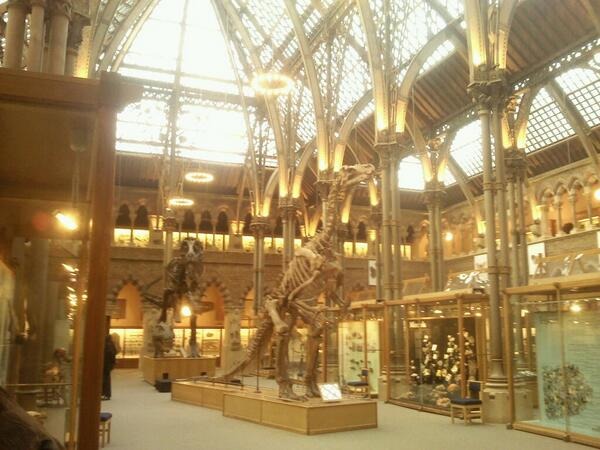 Great to see @morethanadodo re-opened. The new roof is amazing! Hurrah! http://t.co/0pMa75UWEE