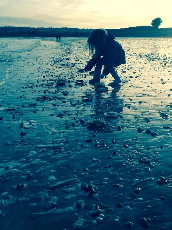Angry seas spewed a treasure trove of shells.. http://t.co/nAd0XZoCgf