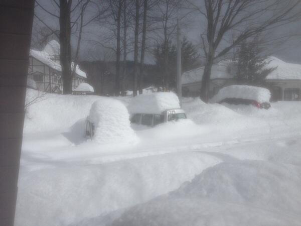 僕の働く白州国道のライフライン・山梨県道614号駒ヶ岳公園線沿いに駐車した車。歴史的な雪。牧場の施設も多くが倒壊。山梨県全体が同様の被害があるよう。皆様にもぜひ関心を寄せて頂きたく。 http://t.co/cequFEHOGs