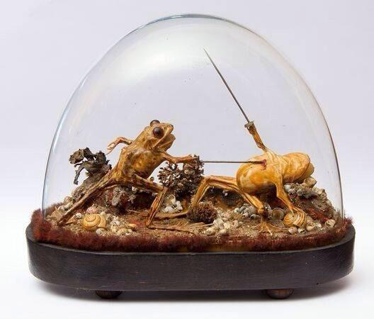 This taxidermy was found inside a late 19th-century French mansion which had been sealed up for more than 100 years http://t.co/DjuGhLMh7G