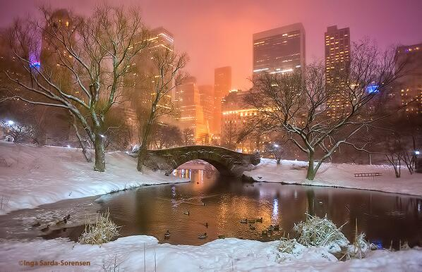 Central Park looks magical tonight in the fresh, new snow. #NYC http://t.co/CRUQ60jCZe