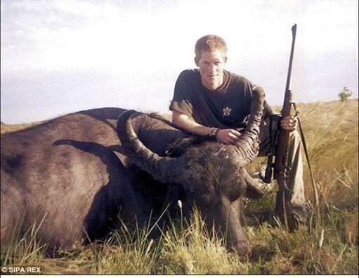 Prince Harry, animal lover. http://t.co/SWRs5f9kVW