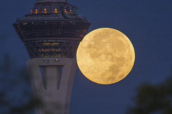 Full Moon rises behind the @LVStratosphere in #LasVegas #photography w/ @Canon by @702Web #astrology @NASA #earthpics http://t.co/XeYwDgbF5F