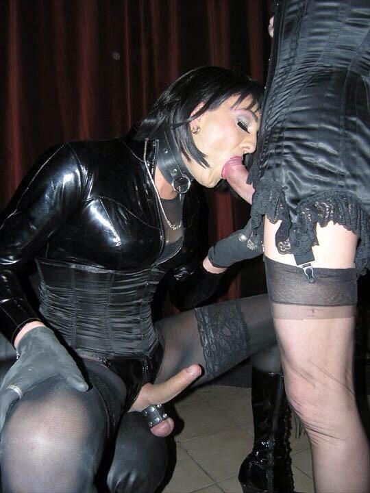 milfs ladies sucking cock