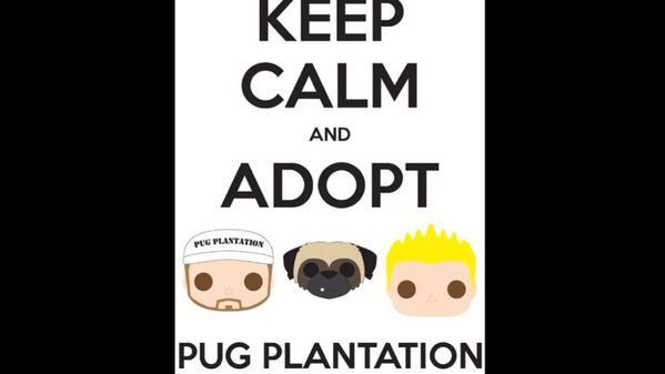Pug Plantation (@pugplantation) | Twitter