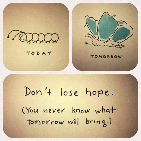Don't Lose Hope (You never know what tomorrow may bring !!) #quoteoftheday #quote #midweek #inspiration http://t.co/8jfsXNPWLj