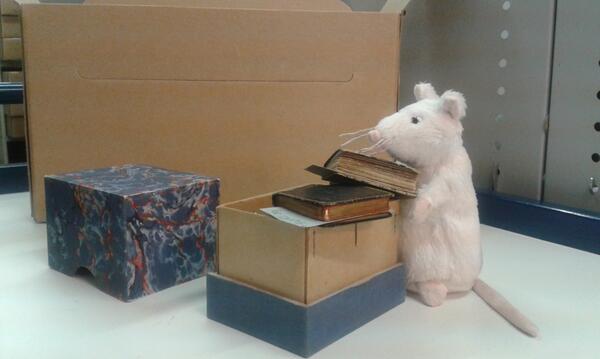 Is dat nu de muis van @Kruimgouda in ons depot? Meer op: https://t.co/rAvHtTwW26 #verhuizing #archiveshelfie http://t.co/IUVKZbd5SE