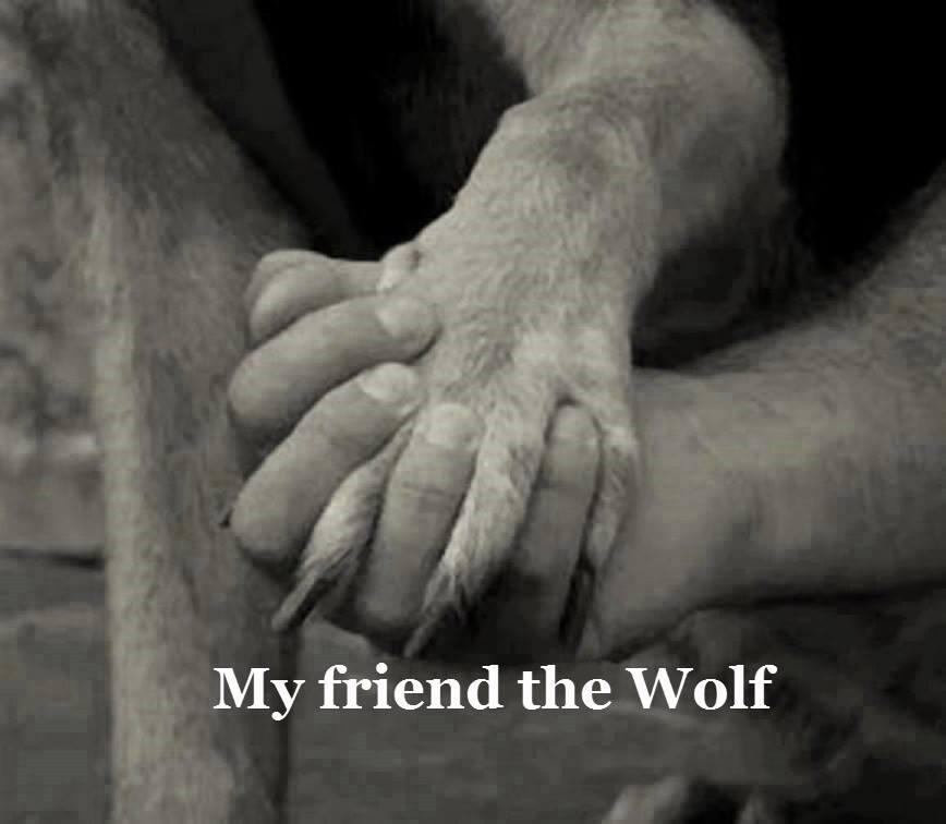 Ποιος είναι ο φίλος μου;