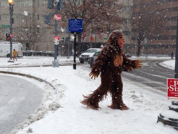 Guy in a Bigfoot costume walking around snowy #DupontCircle #DC for no good reason. Told me he was warm & high5'd. http://t.co/Qy3ctLb9ZL