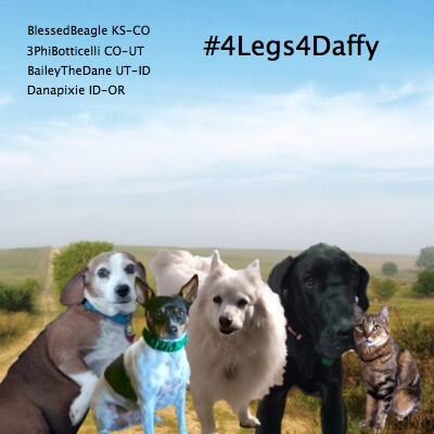 LEG 1 #4Legs4Daffy - @BlessedBeagle traveled to Kansas, is taking DAFFY to Colorado today. #TheAviators #pawcircle http://t.co/HZdw6TlqNm