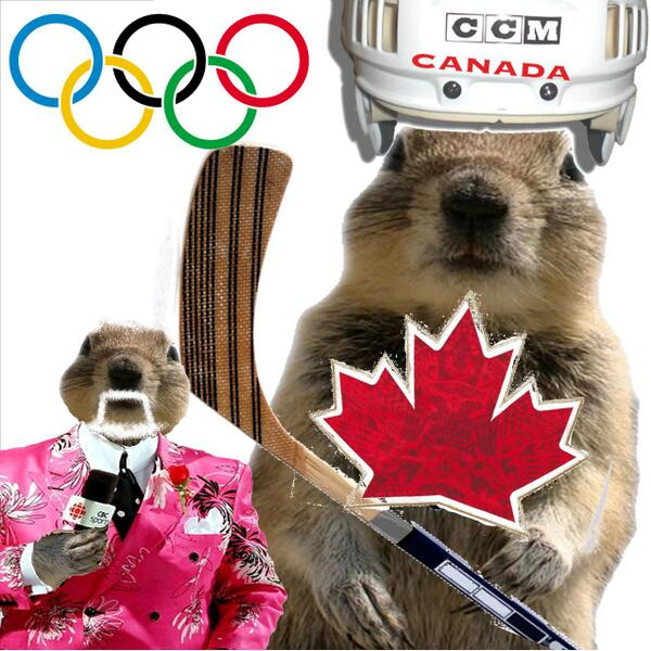 Dear World. Most of Canada will be unavailable from about 10am-1pm MST today.  #hockey #sochi2014 http://t.co/kufCw0gjEC