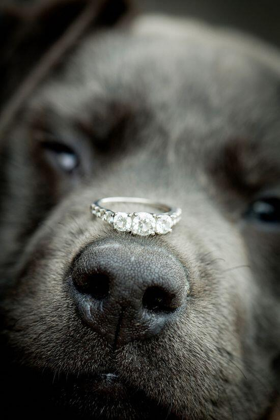 Chabos Jewelry ChabosJewelry Twitter