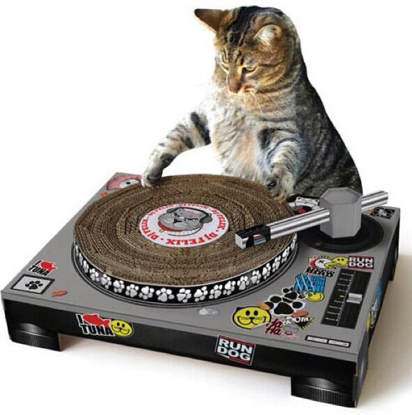【猫の日】(≧∇≦)  ネコ用ターンテーブル型爪とぎ 「キャットプレイハウス」2,415円(税込)  イギリスのデザインブランド『Suck UK』発、ネコ用のカワイイ組み立て式爪とぎです。http://t.co/magLg6JtES http://t.co/0NSlkwsJzW