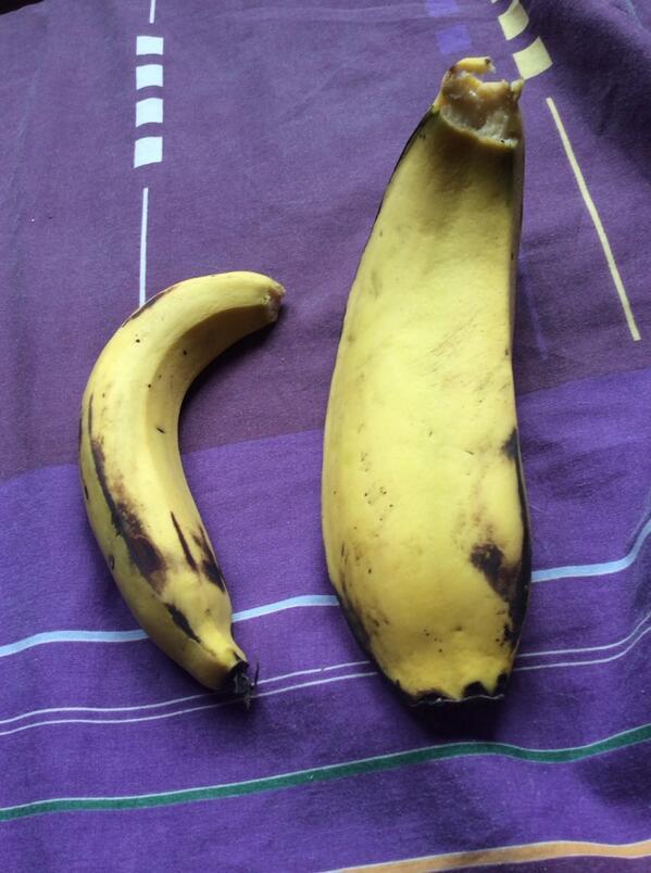 Ellie Murrell On Twitter My Monster Banana Gobble Http T Co