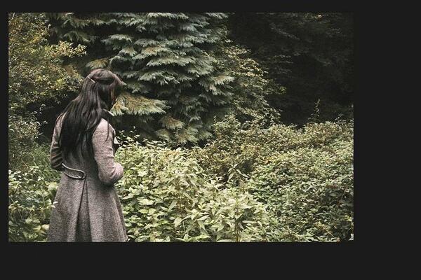 #forest #devon #fantasy #woods #photography http://t.co/KrixVg2RPZ