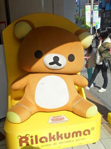 รีแลคคุมะนั่งอาบแดด ที่อิเคะบุคุโระ ญี่ปุ่น http://t.co/PT52ybdaK9