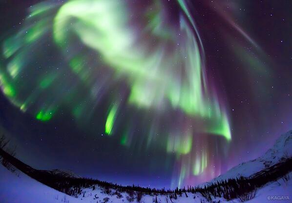 文明社会から遠く離れた極北の空はたいへんにぎやかです。 pic.twitter.com/sVibma9GAH