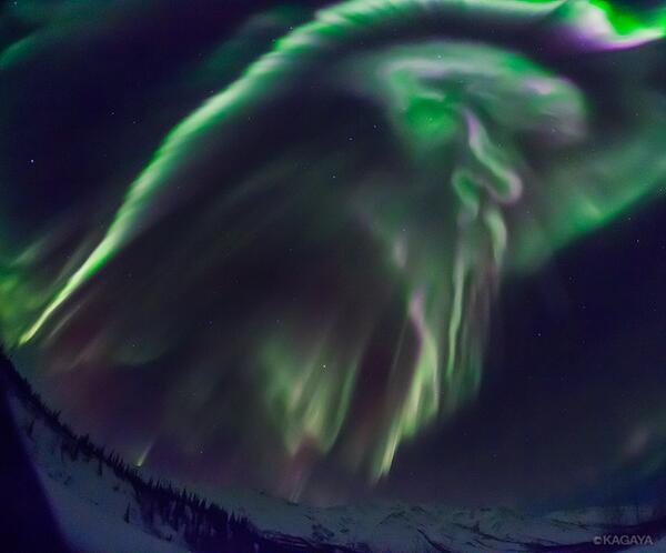 雪原にたった一人、何時間もオーロラの光を浴びていると、まるで別世界にやってきたという気になってきます。 pic.twitter.com/t1aPV67NcE
