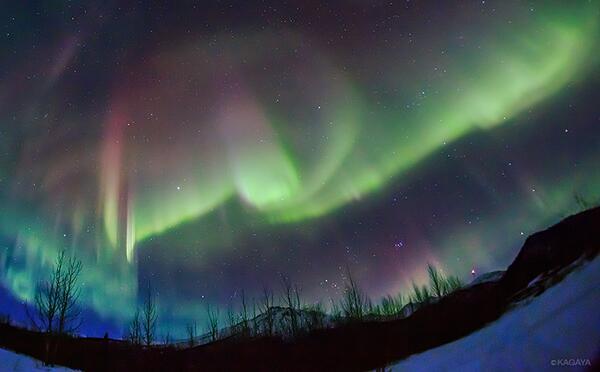 北極圏に来て1週間以上がたちました。毎日快晴で活発なオーロラが出続けています。オーロラを見ていると、まるで音楽が聞こえてくるよう。毎夜、凍てつくそよ風に吹かれながら、ただひたすら空の唄を聴き続けています。 pic.twitter.com/TgzJYGNRsp