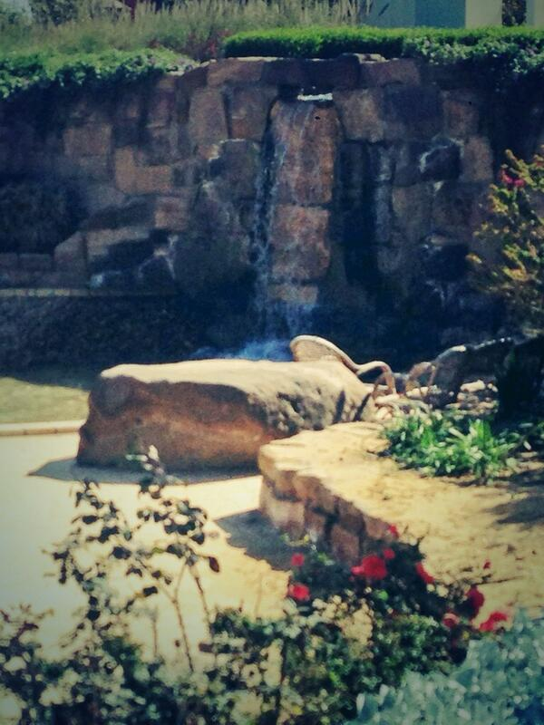 AUC's waterfall will free your mind and release your daily stress. #JRMC202 #JRLWeb http://t.co/GKWzIQj00H