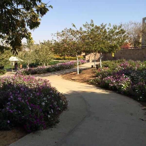 A scenic view of AUC's garden. #JRMC202  #JRLWeb http://t.co/8LL1K7CGJW