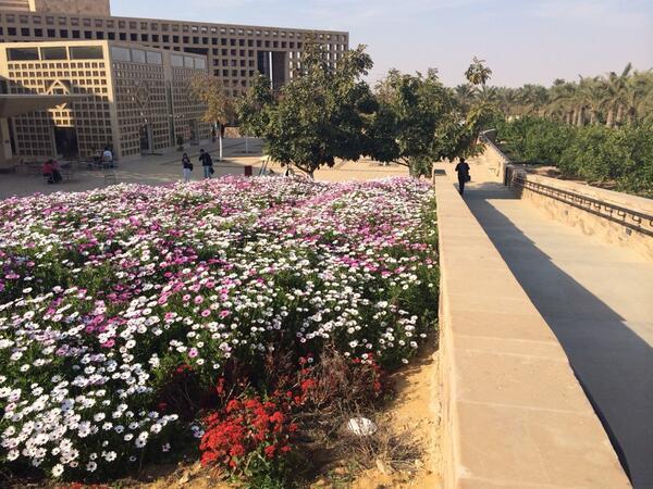 Beautiful garden spot next to food court. #JRMC202 #JRLWeb http://t.co/hxAmqbdwUw