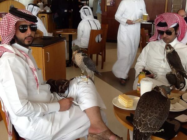 Three falcons enjoying a mid morning break with their owners at Costa Coffee at Doha airport. http://t.co/9lAa07lgxa