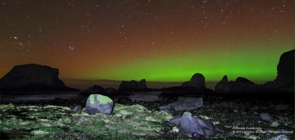 The Northern Lights in County Antrim last night http://t.co/FEMvmuluYx RT @Hiberniaphoto: Aurora at Elephant Rock http://t.co/ou4swt5DNG