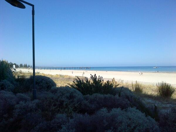 Glenelg looks lovely from afar. But it hides a dirty secret on Clean up Australia day @glenelg. http://t.co/75WoVi0pXK