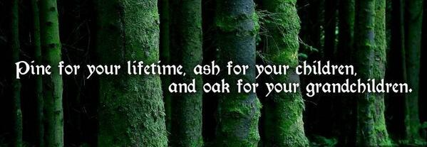Image result for Irish sayings pine for your lifetime