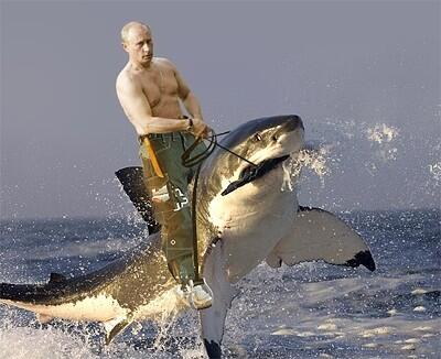 BREAKING: Russia reporting that Putin has found #MH370 during a routine swim. http://t.co/pWcsUf66i2
