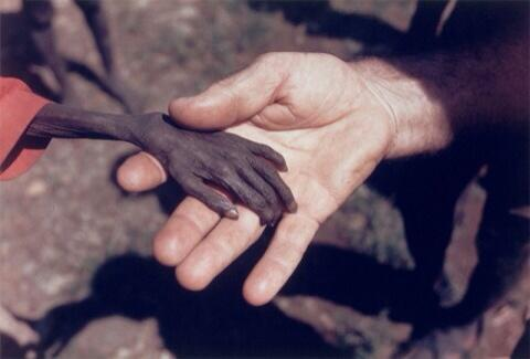 Tyvärr, du + 2 000 andra får ingen mat, för pengarna går till 16 killar m mobiler, märkesjeans o vassa armbågar. https://t.co/0dTPDQuOjO