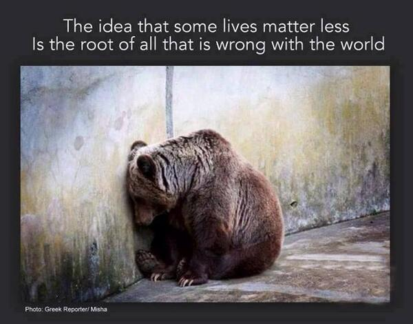 """The idea that some lives matter less is the root of all that is wrong with the world."" #animalrights #compassion http://t.co/J9JvdgWUJL"