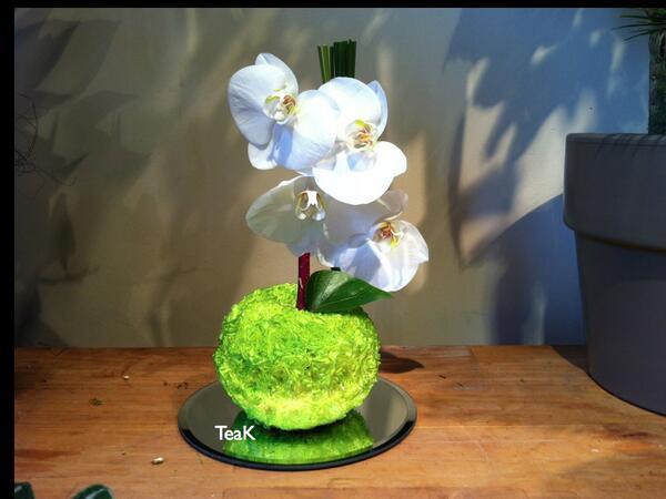 Teak Flower Design Teakflower Twitter