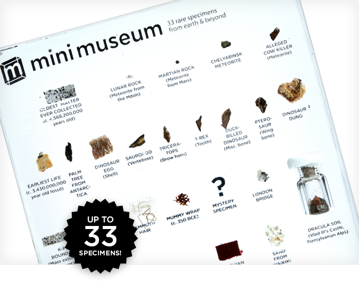 Take a look at a 'Mini Museum' displaying tiny fragments of history: http://t.co/jlgW8tkKwE http://t.co/ybTtwldpZe