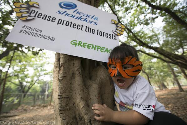 Twitter / GreenpeaceAustP: Awesome! This little tiger ...