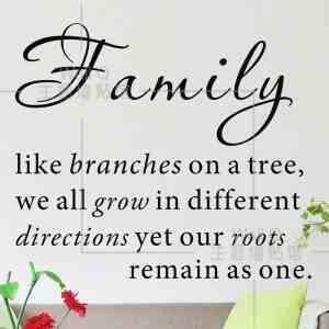 quotes about family - 800×800