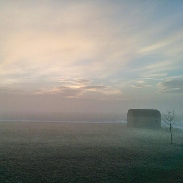 Twitter / thefarmerslife: Off to a foggy start today. ...