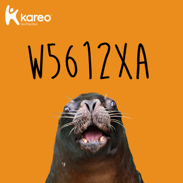 W5612XA is #ICD10 code for struck by a sea lion. @GoKareo is code for coming to the rescue. http://t.co/d36S5kpyGG http://t.co/Nh8dHwfSSQ