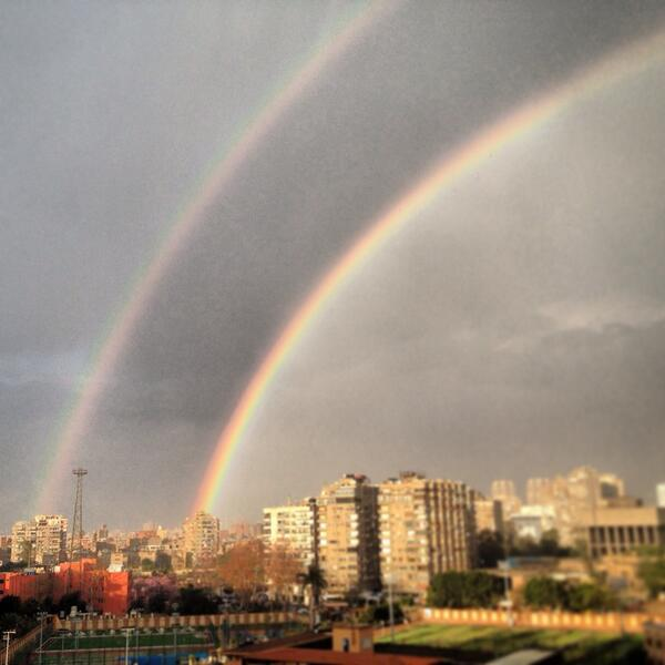 Look what I found outside my window, not one but two! #goodOmen http://t.co/KWjqxwv2Va