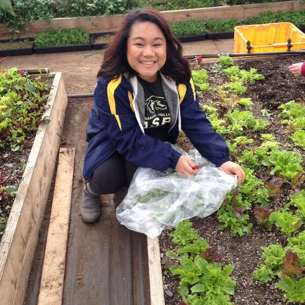 @nomsandnotes picked our salad for dinner tonight from @TheFoodProject #delicious #ecasbbos14 @EmmanuelCollege http://t.co/4qZfZsAb1c