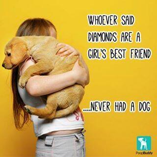 my pet is my best friend