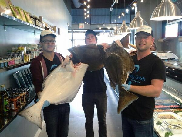 """The Daily Catch on Twitter: """"Fresh Halibut has just arrived at our 3 Daily  Catch locations. #Commercial Drive #Davie st #UBC #Halibut #Seafood  http://t.co/sjZwLQe1hS"""""""