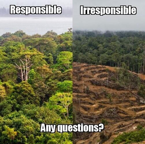 Twitter / GreenpeaceAustP: Is this your idea of ...