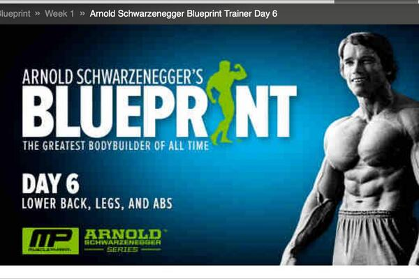 Alejandro nieto alexnietoshi twitter schwarzenegger blueprint day6 bodybuildingcom httpbodybuilding funarnold schwarzenegger blueprint trainer day 6ml picitter malvernweather Image collections