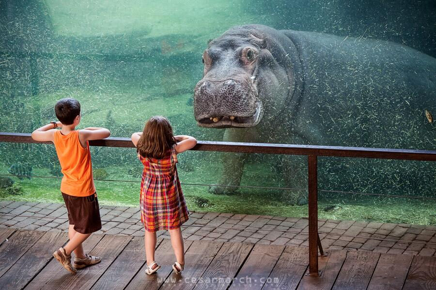 Twitter / zaibatsu: I like the children by Cesar ...