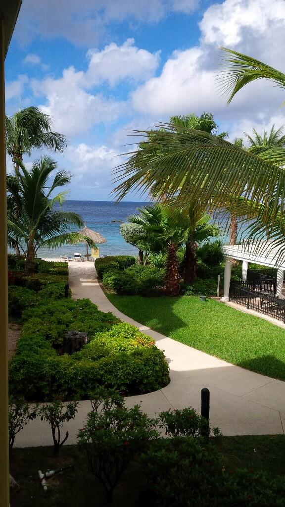 Twitter / WashingtonRbrts: Morning view. #dushiland #curacao ...